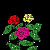 Cg20111130_2