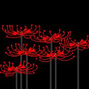 Cg20120908
