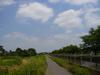 Photo_371
