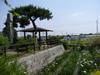 Photo_436