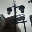 鳳凰の街路灯