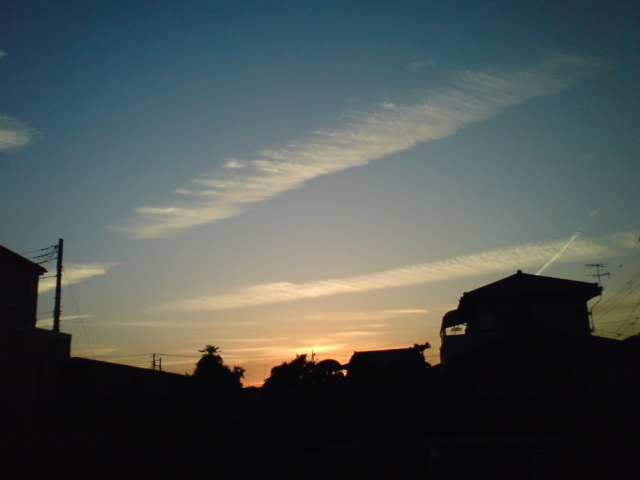 Photo_58