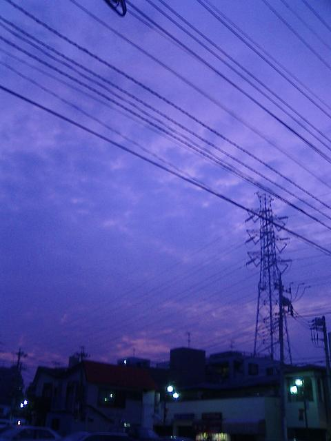 Photo_407